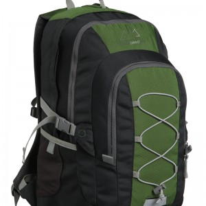 Green 25L Backpack